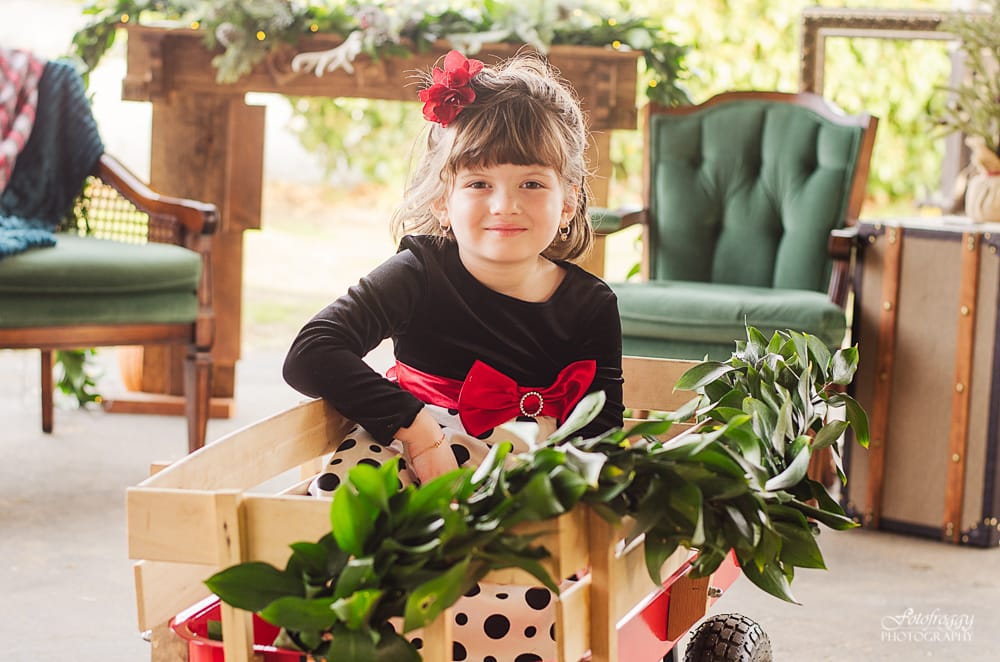 Little girl in Holiday dress, Christmas wagon - www.fotofroggy.com
